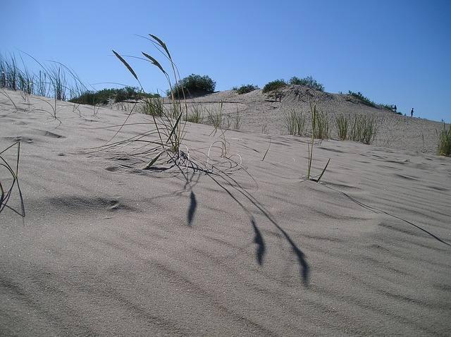 dune-521355_640