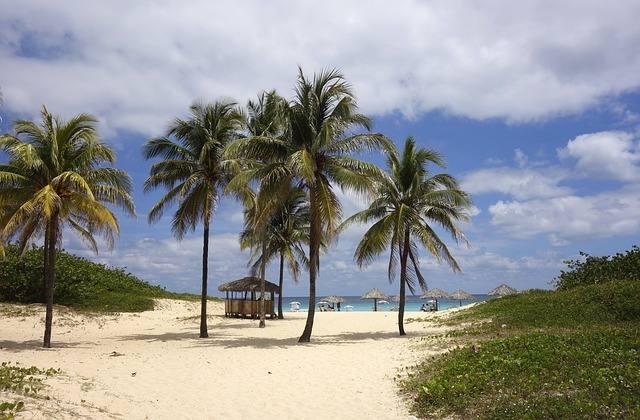 beach-755269_640