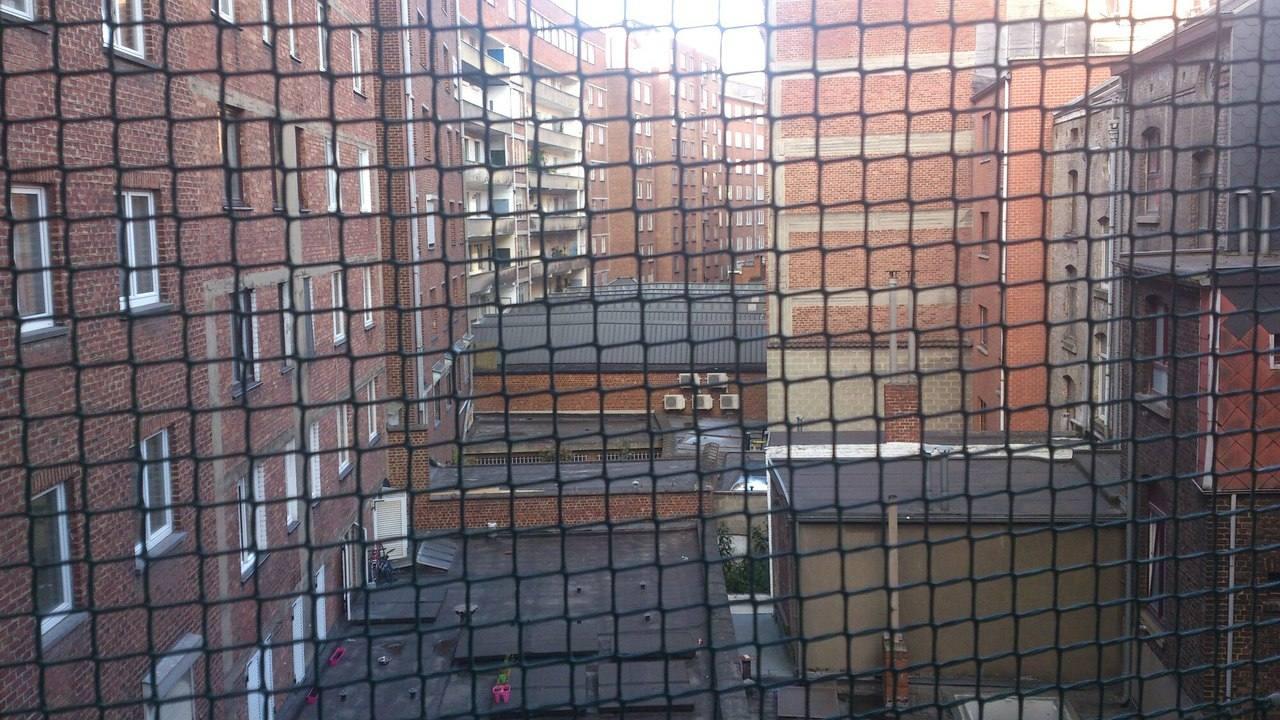 Вид из окна нашей квартиры