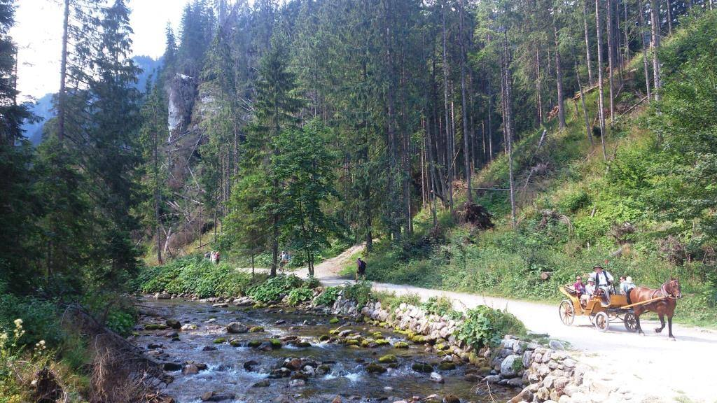 Долина хохоловска летом