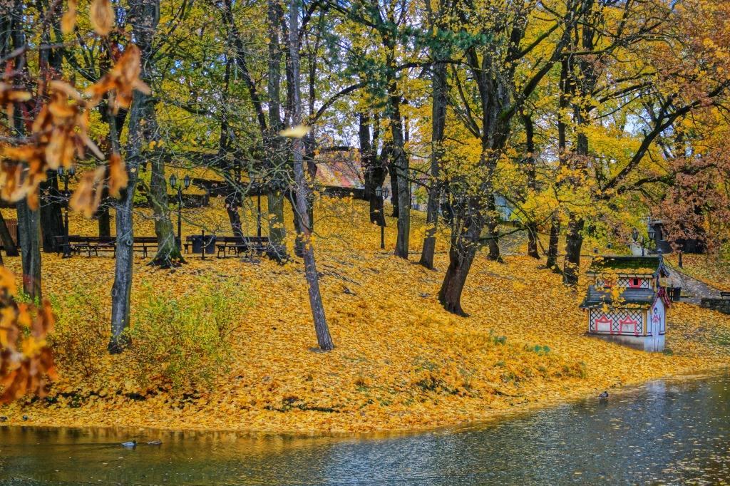 Рига осень