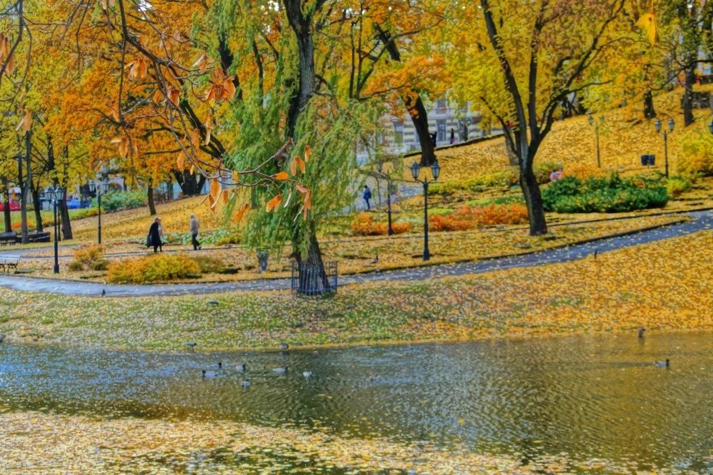 осенью в Латвии