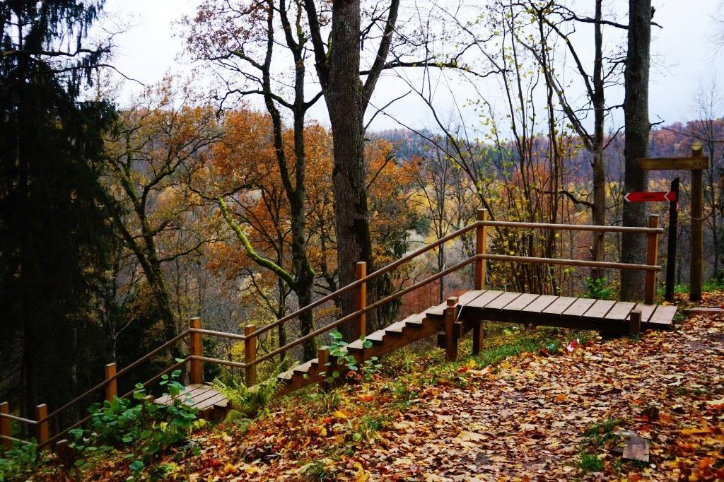 лестница парк Гауя