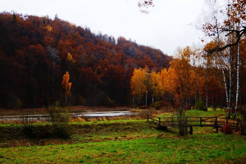 Парк Гауя яркая осень