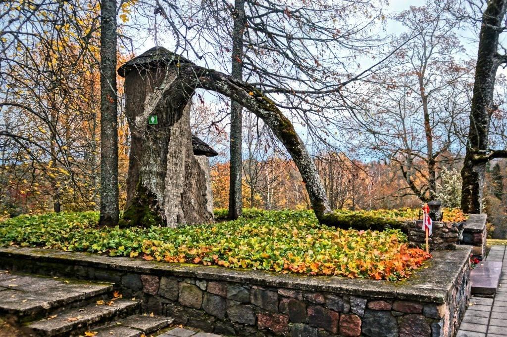 могила Турайдской розы осенью