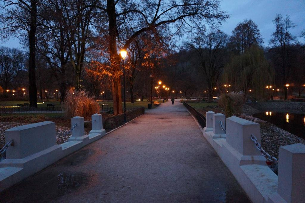 сад вильнюса ночью