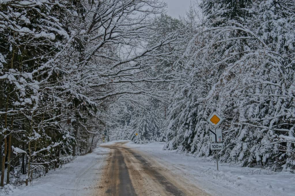 зимний лес и дорога