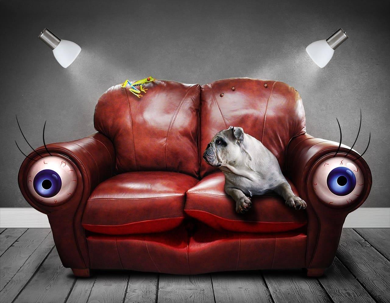 диван с глазами