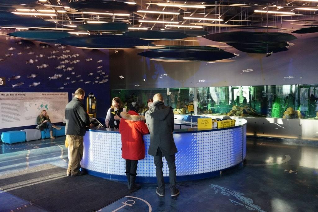Леннусадам (Летная гавань) как самый интересный музей Таллинна