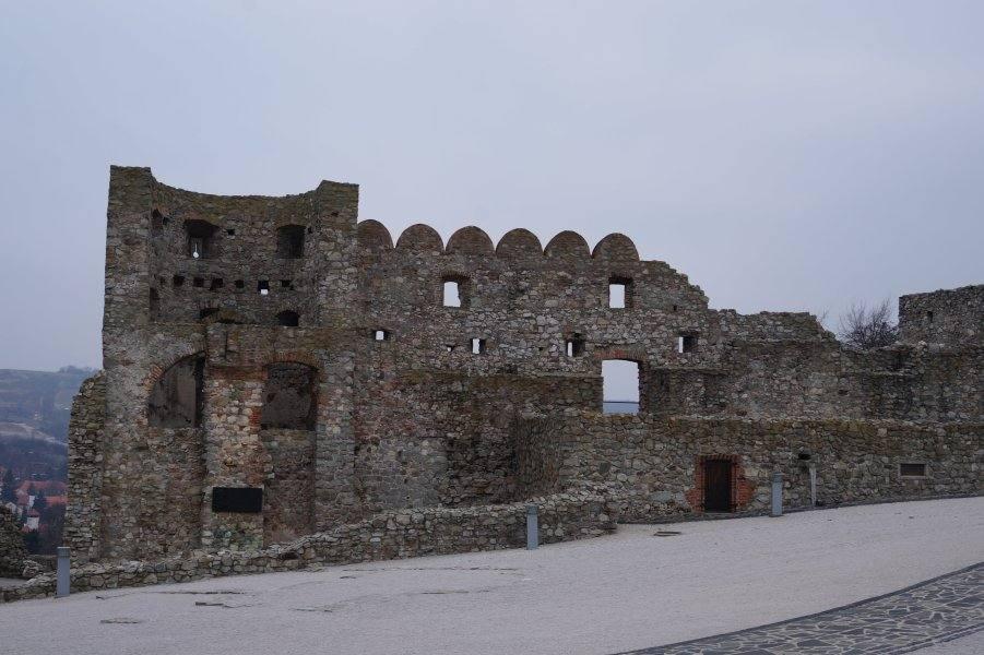 devin-ruiny-sten