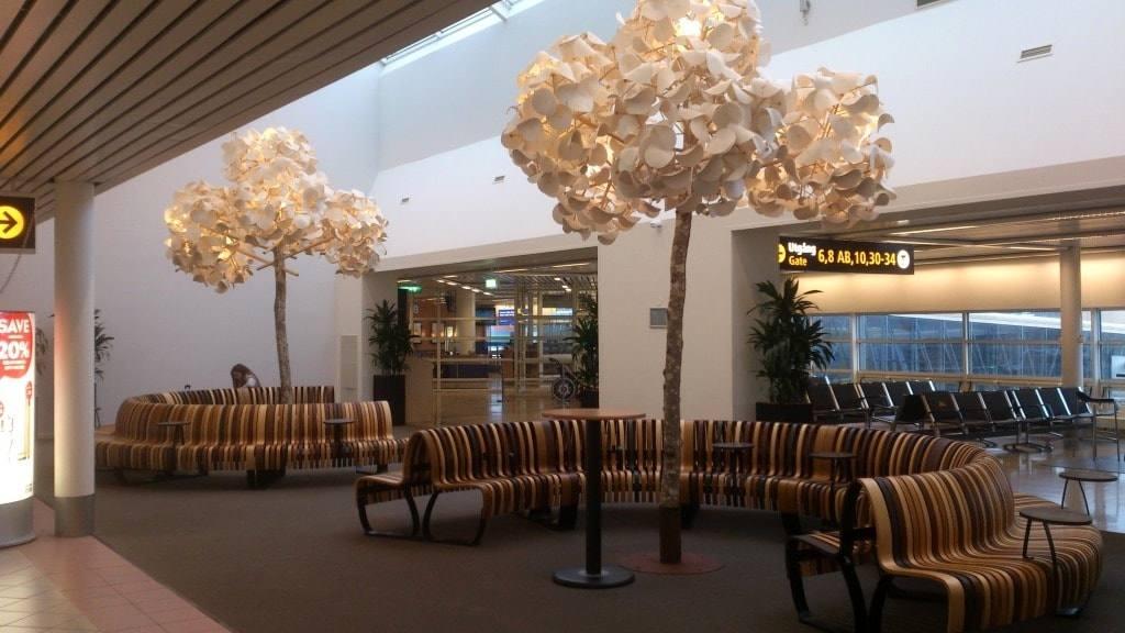derevja-aeroport-malmyo