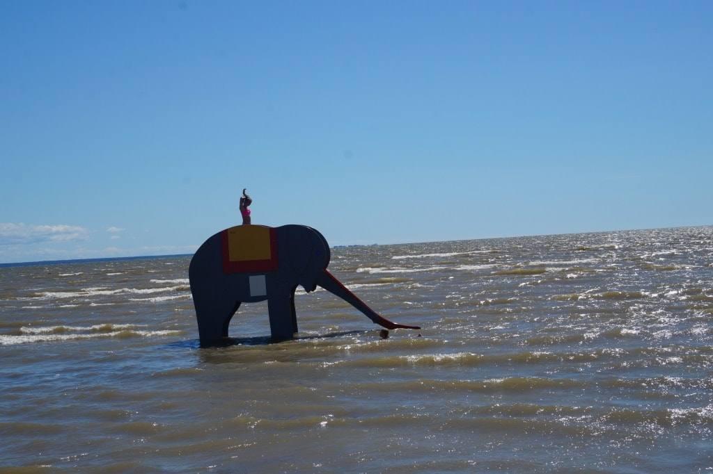 slon-v-more