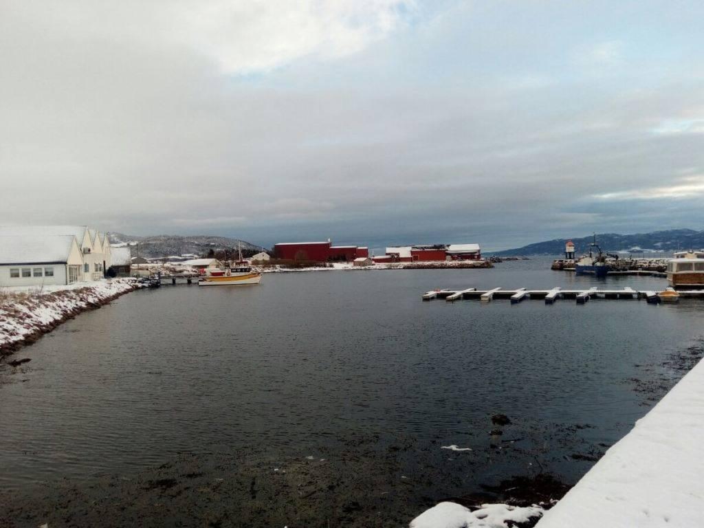 ostrov-smola
