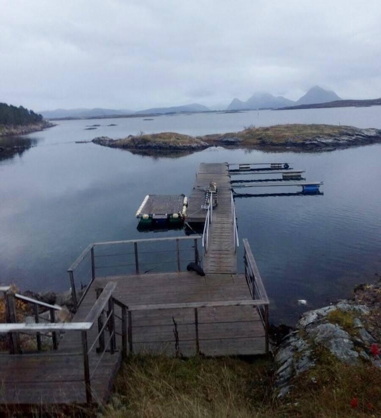 priroda-norvegii