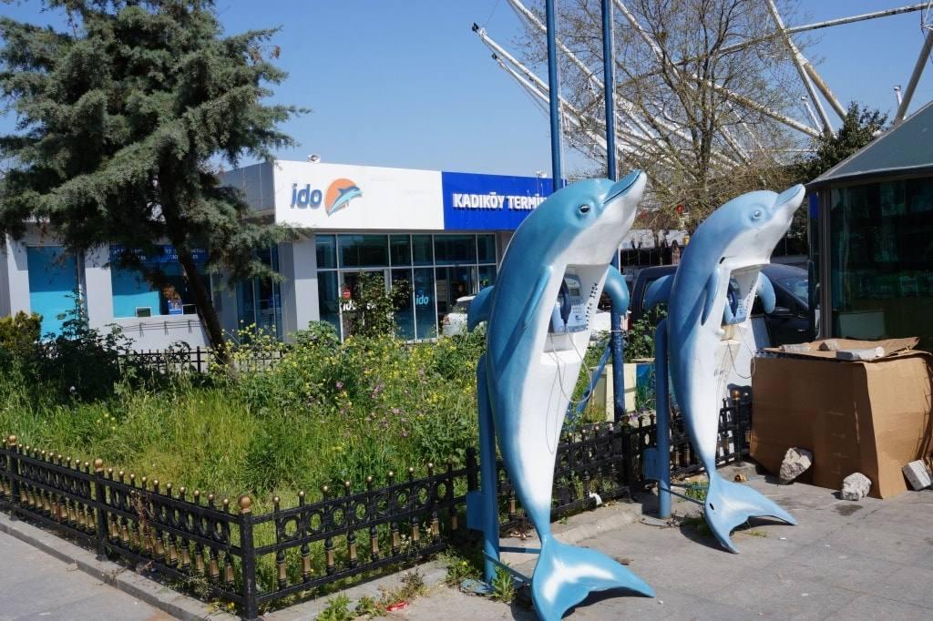 telefony-delfiny