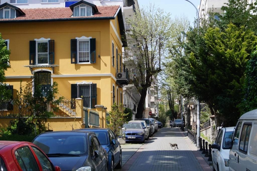 doma-i-ulicy