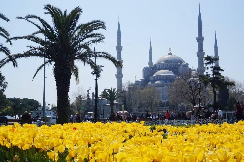 stambul-turcija