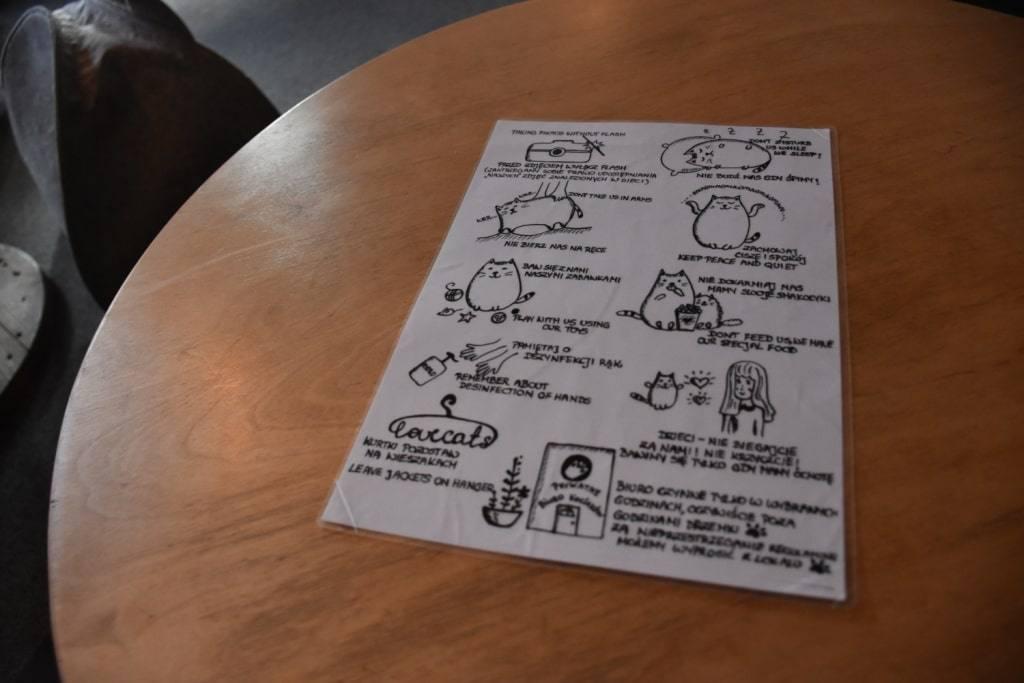 pravila-koshachjego-kafe