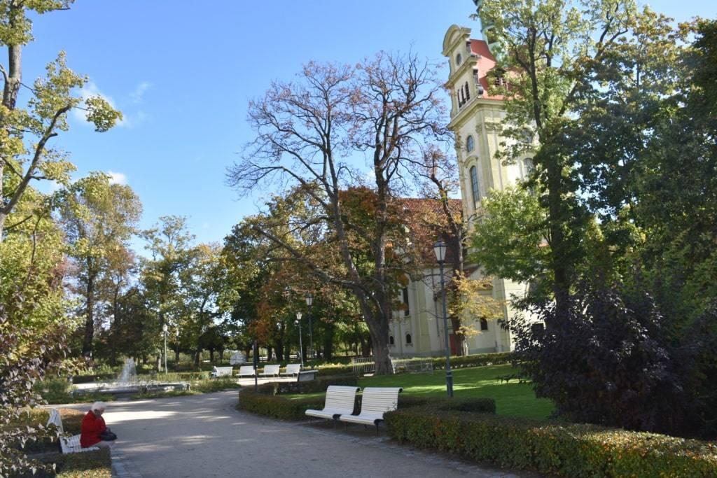 alleja-uzhnogo-parka