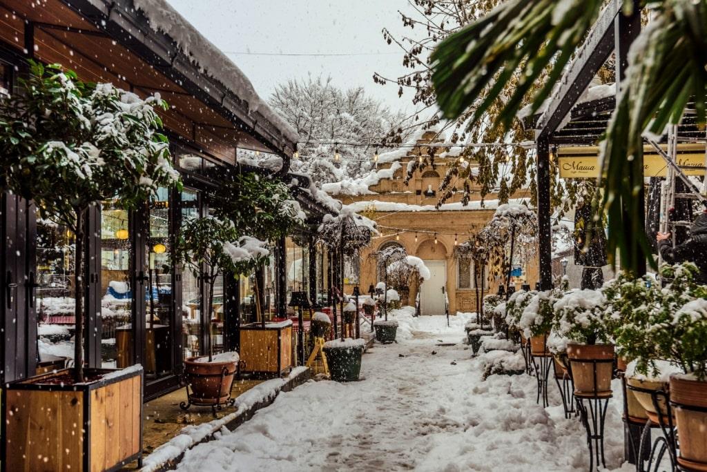 sneg-v-novi-sade