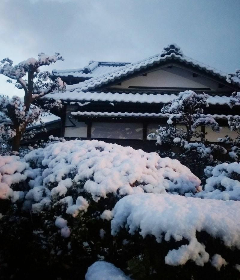 zima-kioto