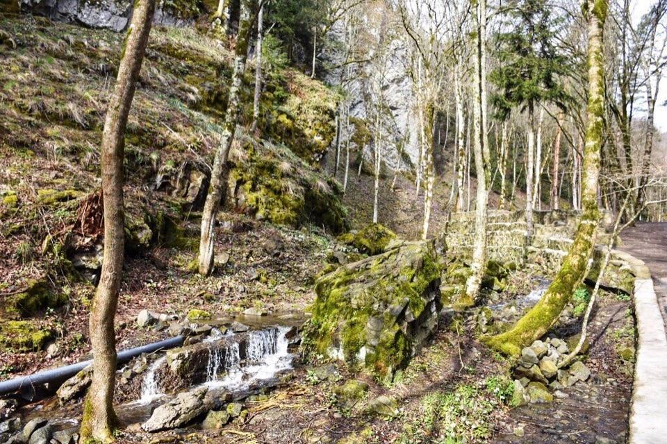 reka-vozle-zelenogo-monastyrja