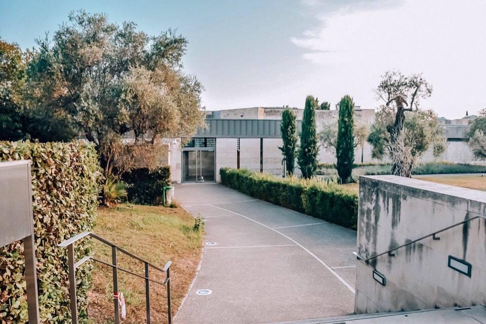 muzej-shagala