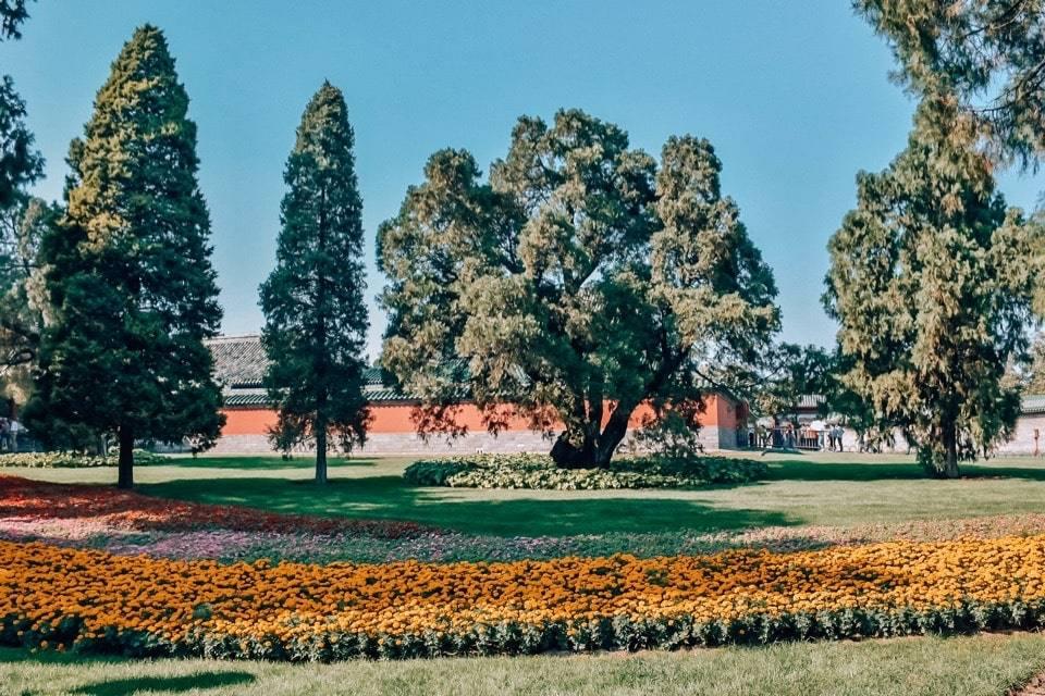 park-tjantan