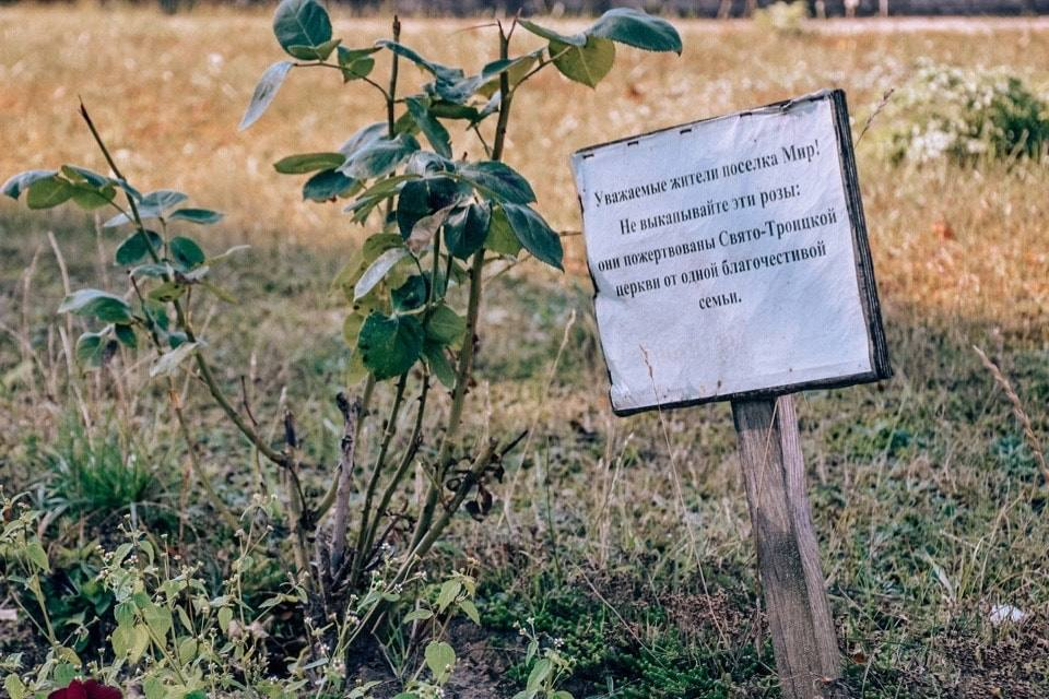 vozle-zamka