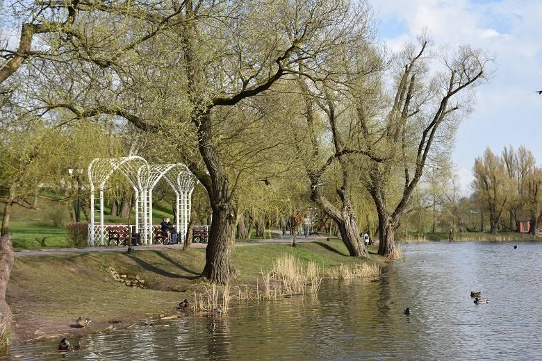 loshica-park