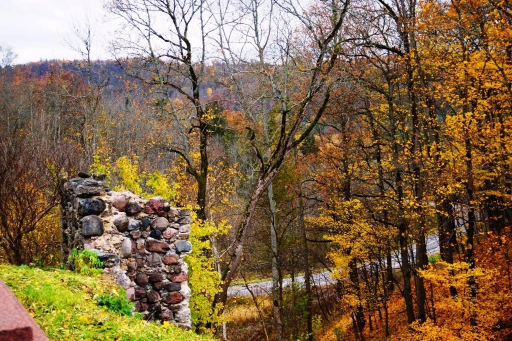 Сигулда осенью развалины