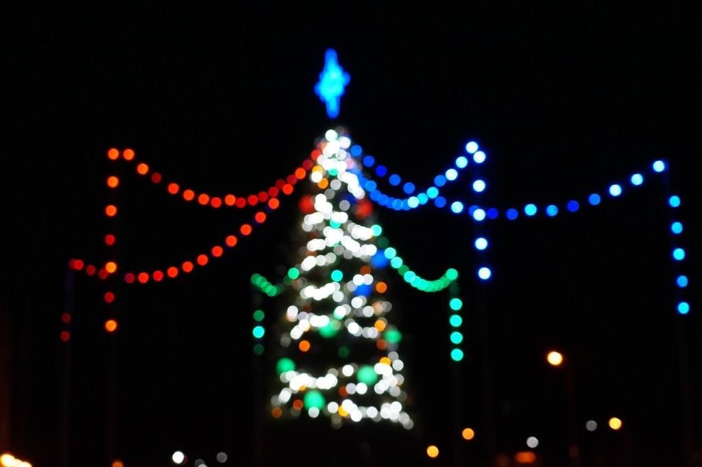 елка в Ольшанке