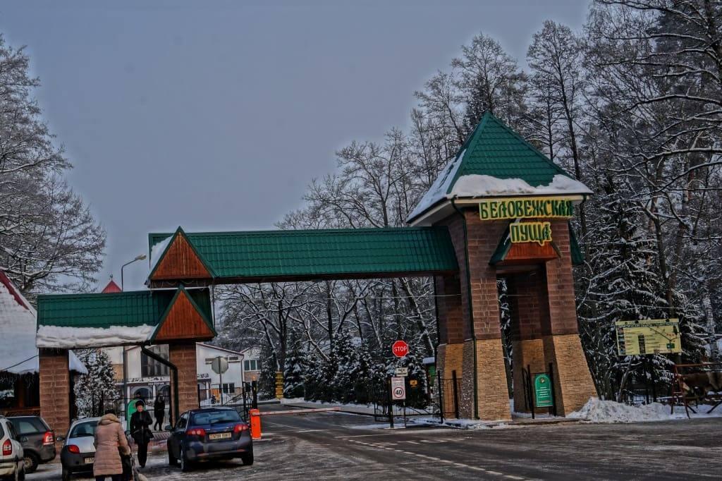 ворота Беловежской пущи