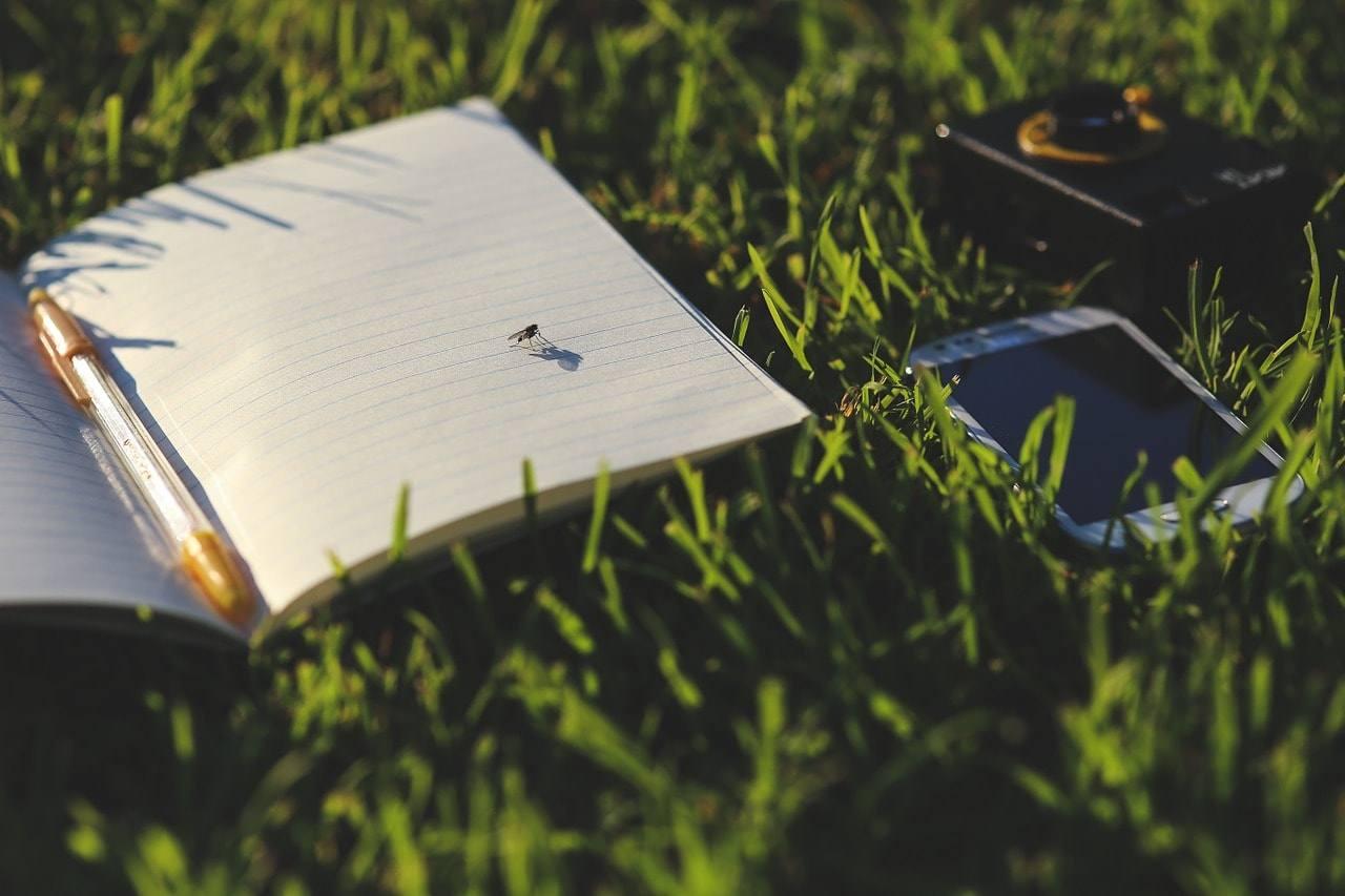 Как найти удаленную работу новичку: 10 профессий, на которые стоит обратить внимание.