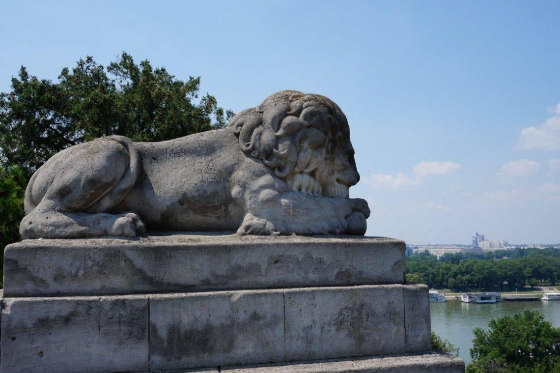 Kalemegdan park Belgrade fortress lion sculpture