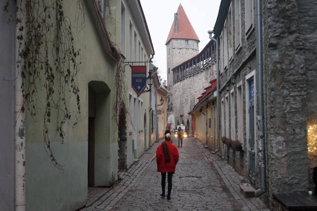 Как самостоятельно получить шенгенскую визу в Эстонию: подробный обзор