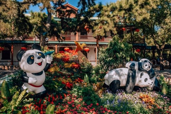 zoopark-pekina-bilety