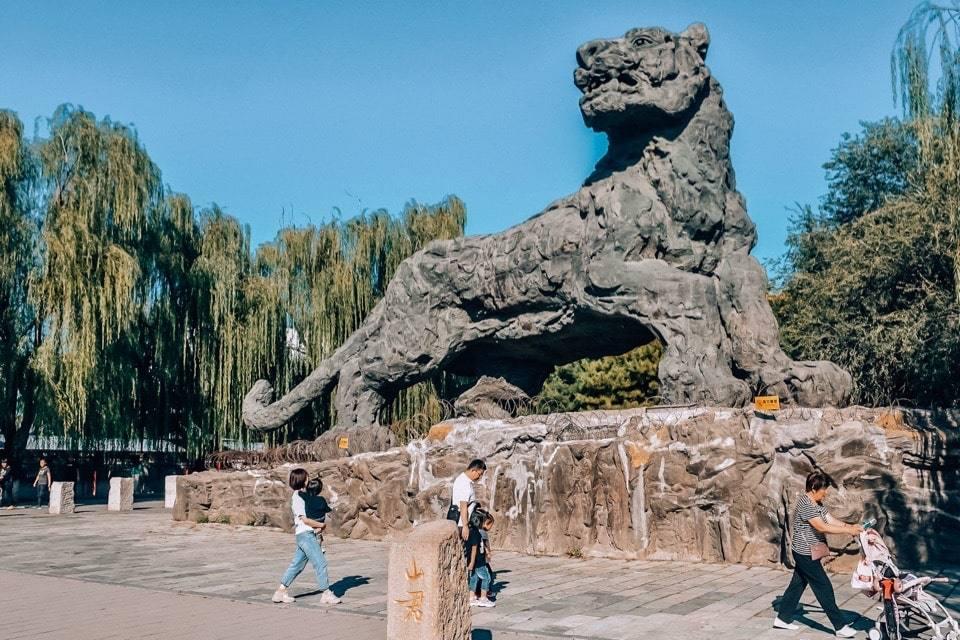 beijing-zoo